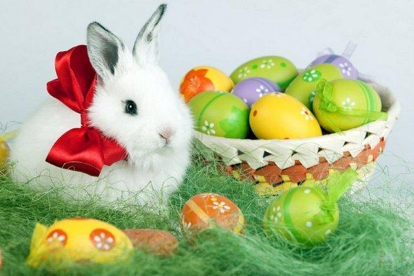 Wielkanoc czyli Pascha lub Niedziela Wielkanocna, to jedno z najstarszych i najważniejszych świąt chrześcijańskich obchodzone jako  pamiątka zmartwychwstania Jezusa Chrystusa – I ich długa historia…