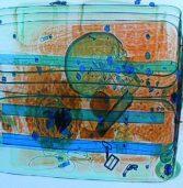 Ludzka czaszka w bagażu lotniczym